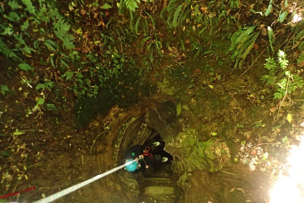 hayley renee smith_waitomo glowworm caves_abseiling 2.JPG