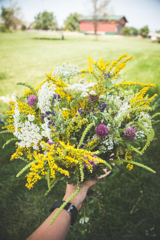 WildflowersPart2-sm-0516.jpg