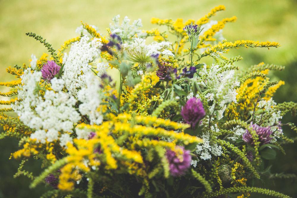 WildflowersPart2-sm-0514.jpg