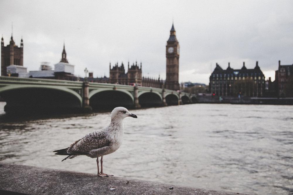 LondonDay4-48.jpg