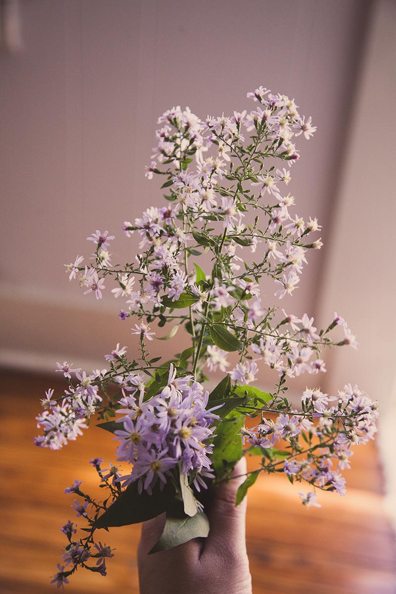 flower-8.jpg