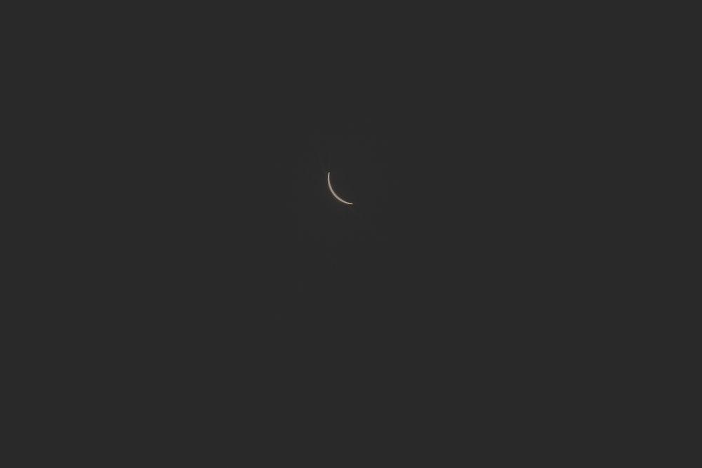 Eclipse2017-blog-0398.jpg