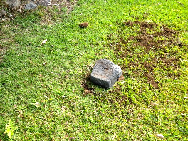 Roger's grave