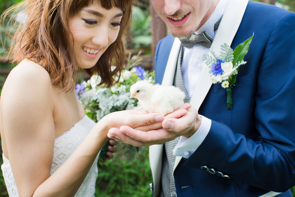 baby chick wedding picture