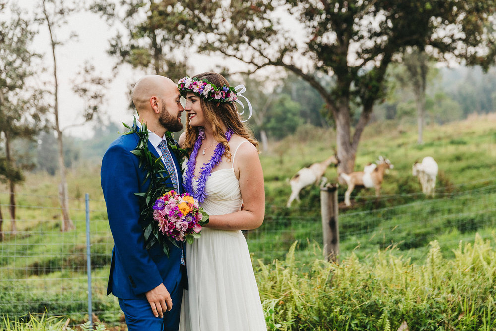 affordable destination wedding