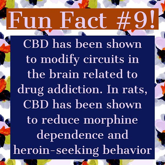 Did you know that #CBD found in #hemp oil can serve as an #intervention for #addictive #behaviors? Read the study attached below for a more in-depth look at how this happens. #recovery #addiction #nyc #la #chicago #miami #healthylifestyle