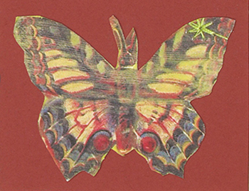 butterflyRed1.jpg