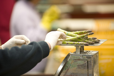 Fresh asparagus being sorted by hand in Levin at Tendertips Asparagus..