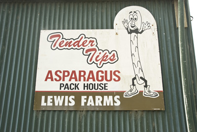 Tendertips Asparagus sign in Levin, NZ.