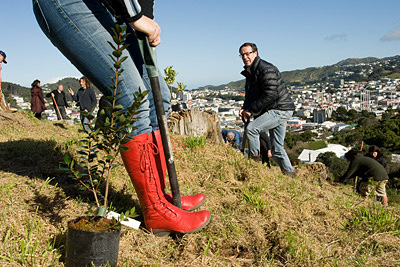 Woman in red gumboots plants a Rata Tree at WOAP.