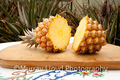 New Zealand pineapple