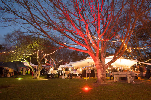 Night Market at Martinborough Olive Harvest Festival.