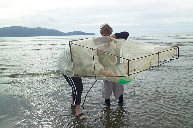 Mother and son fishing with whitebait net at waikanae, New Zealand.