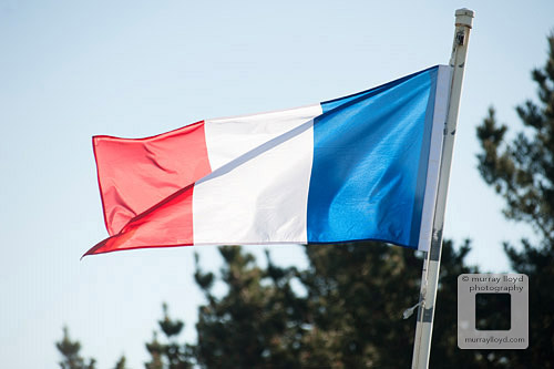 French flag blowing in wind.