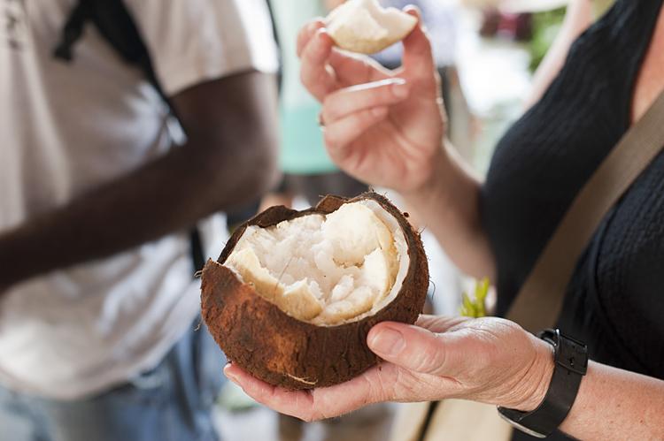 Navara-Coconut_0013blog.jpg