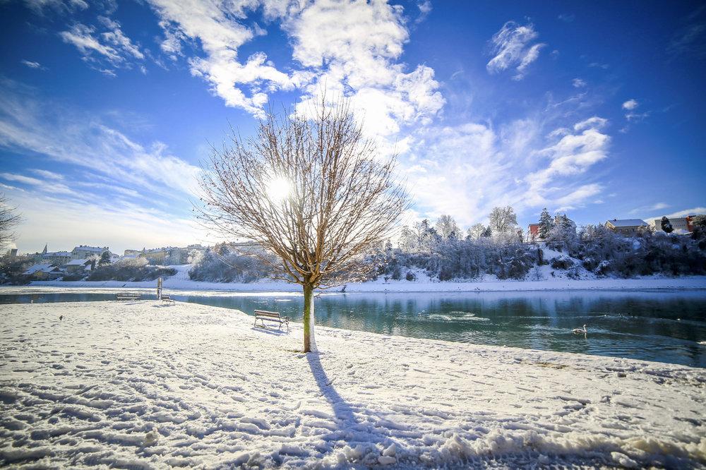 Lonely tree ; januar 2017; Canon 5D; Samyang 24mm