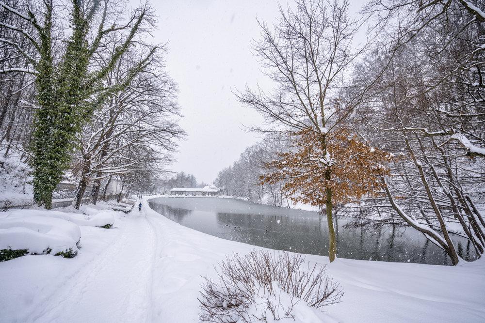Walk in a Park ; februar 2018; sony ilce7rm3; sony fe16-35