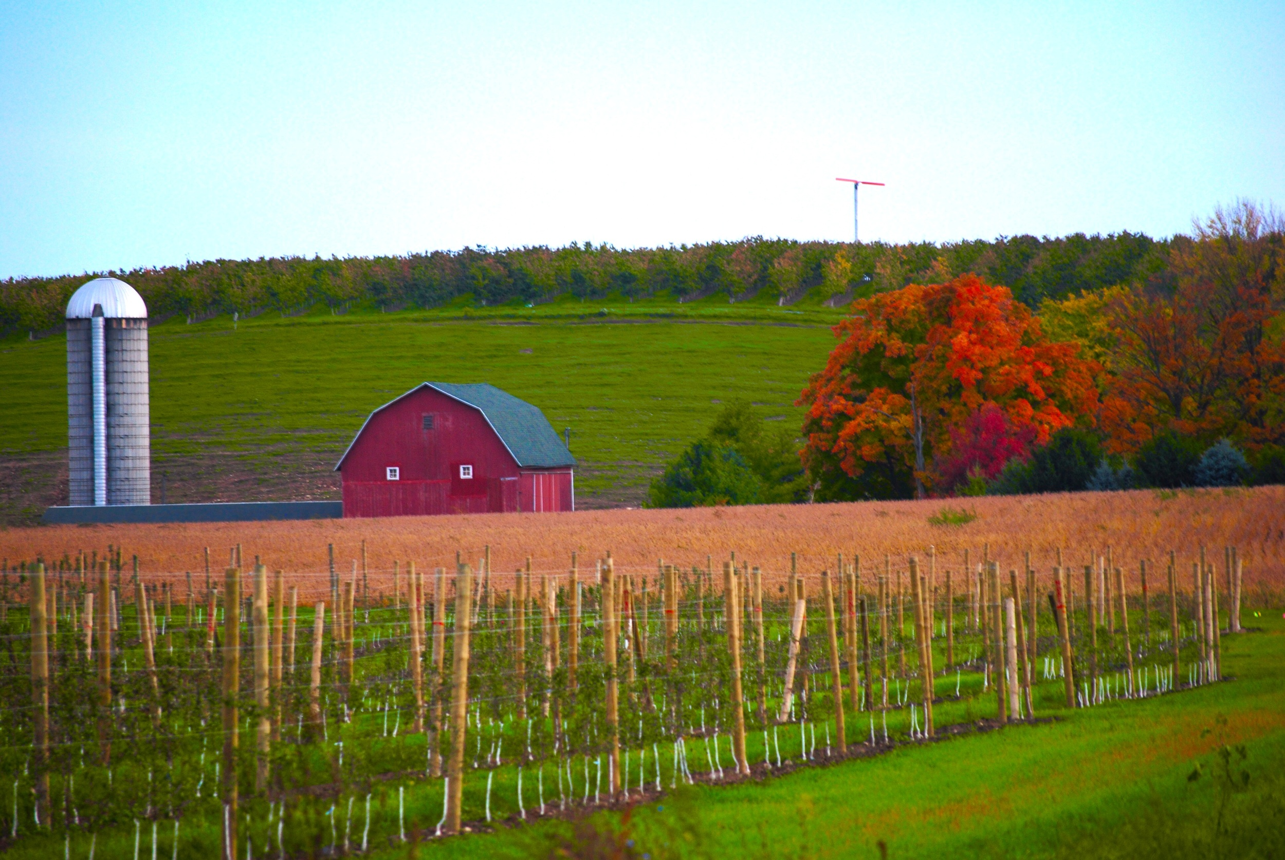 Farm on Fruit Ridge, Grand Rapids, Michigan | Photo Credit: Terri Spaulding