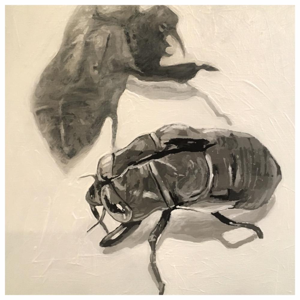 Cicada - Acrylic on board