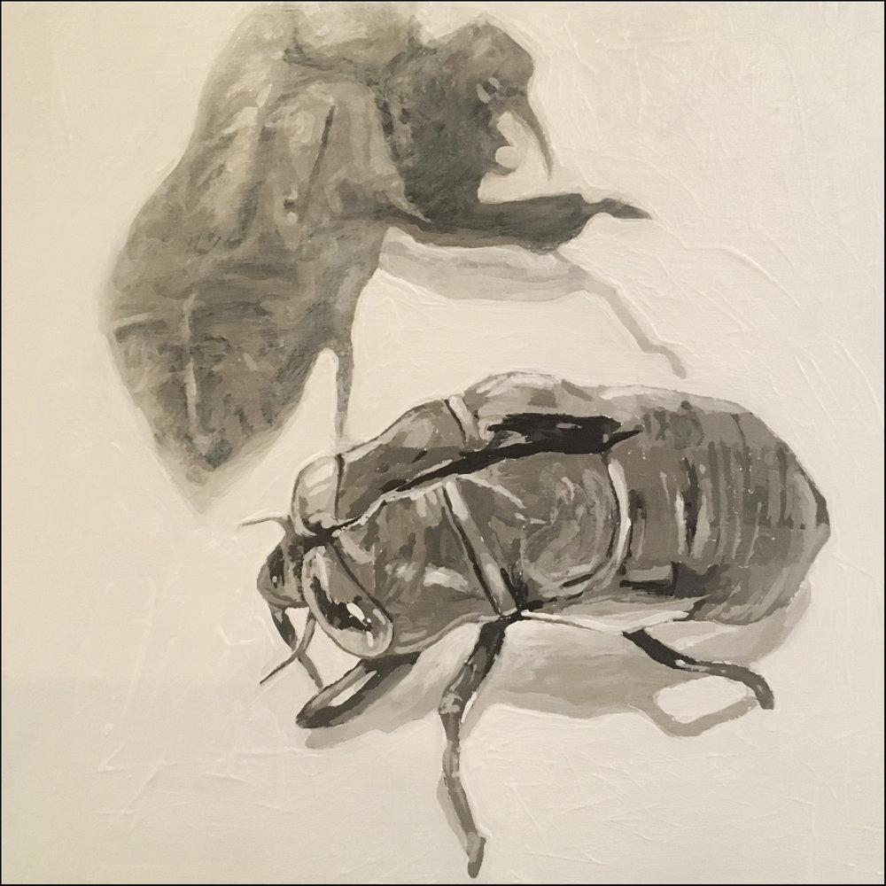 cicada painting for 12x12.jpg