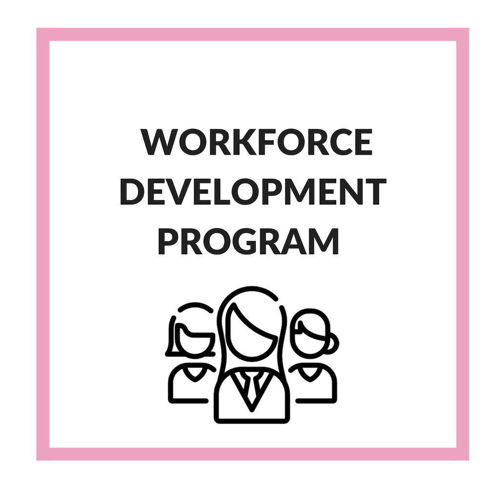 Our Workforce Development Program covers a series of resources, skills, and training to help boss ladies secure meaningful jobs with emphasis on other aspects such as business and technical training to help with career development.