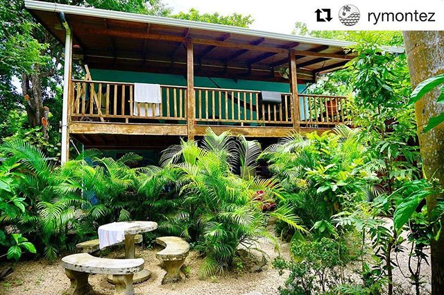 Ouuu our sweet lush jungle oasis awaits to embrace you! 🌿🌿🌿