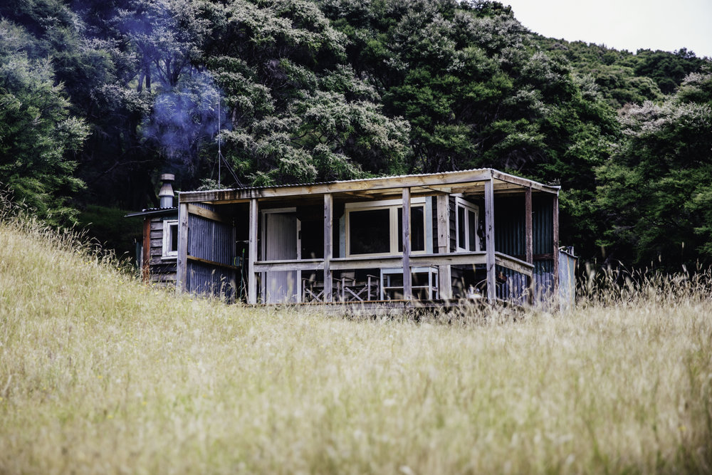 Black Hut - CAPE PALLISER