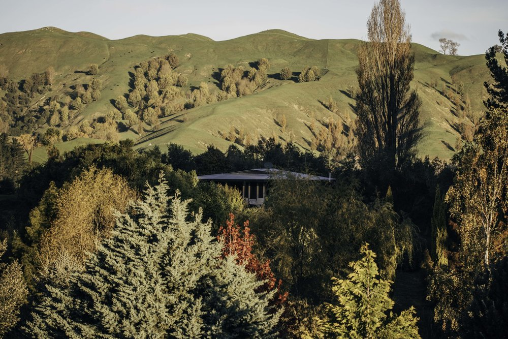 Tom's Cottage - HAWKES BAY