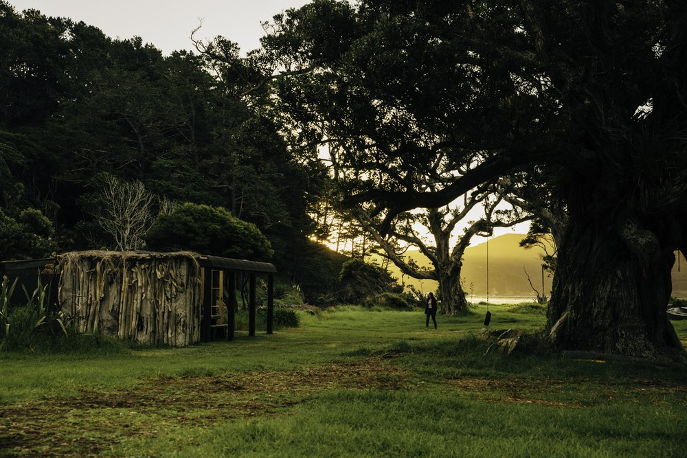 Allom Bay Cabin - GREAT BARRIER ISLAND