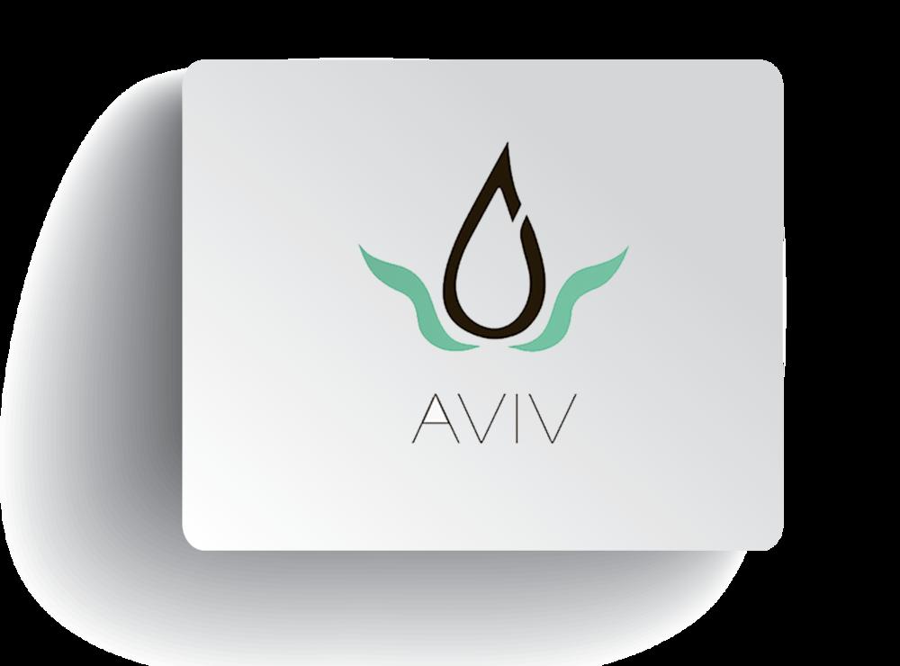 aviv.png