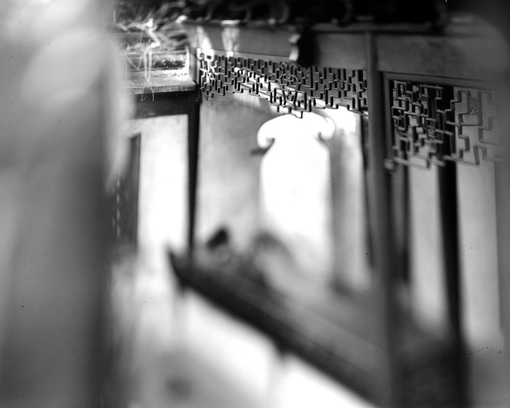 周仰,《不朽的林泉》系列,2017-2018年。图片由艺术家提供。
