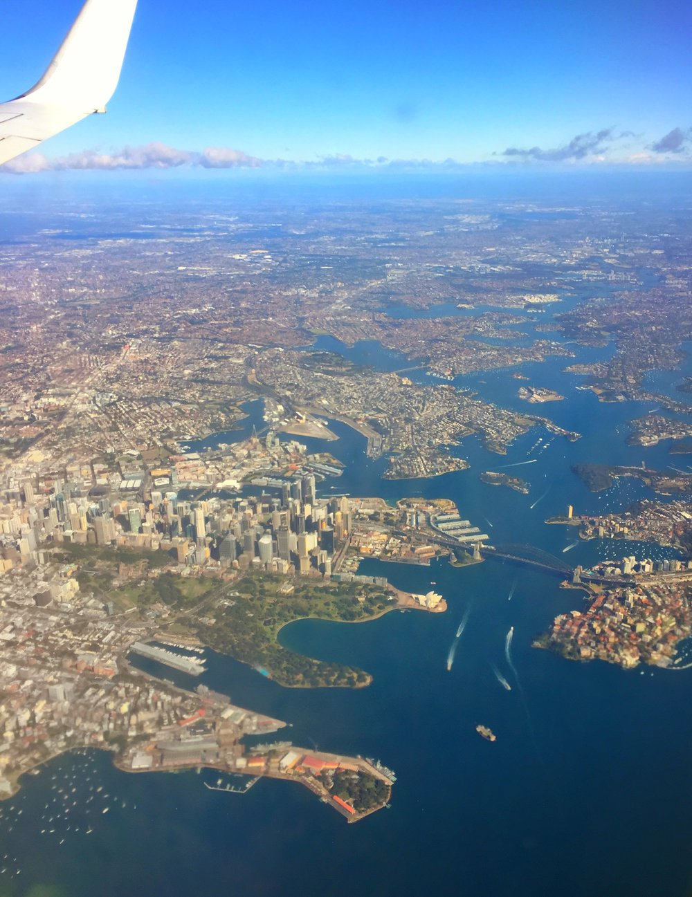 Sydney from the air.jpg