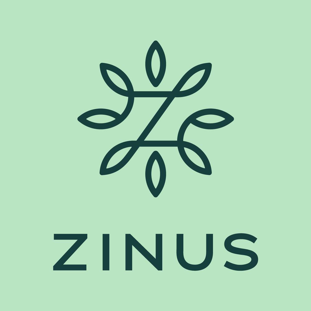 zinus_logo.png