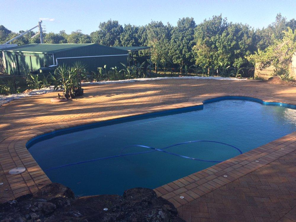 Complete Pool Side Revamp. Nicolia Strelitziau0027s Planted Around The  Perimeter,u0026nbsp;white Gravel