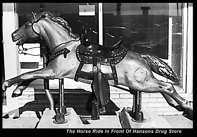 HorseInFrontOfHansonsDrug_Murphy.jpeg