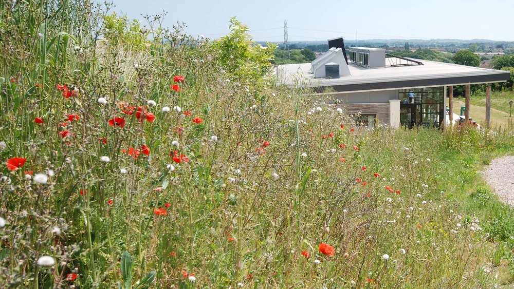 Singleton Environment Centre - Kent