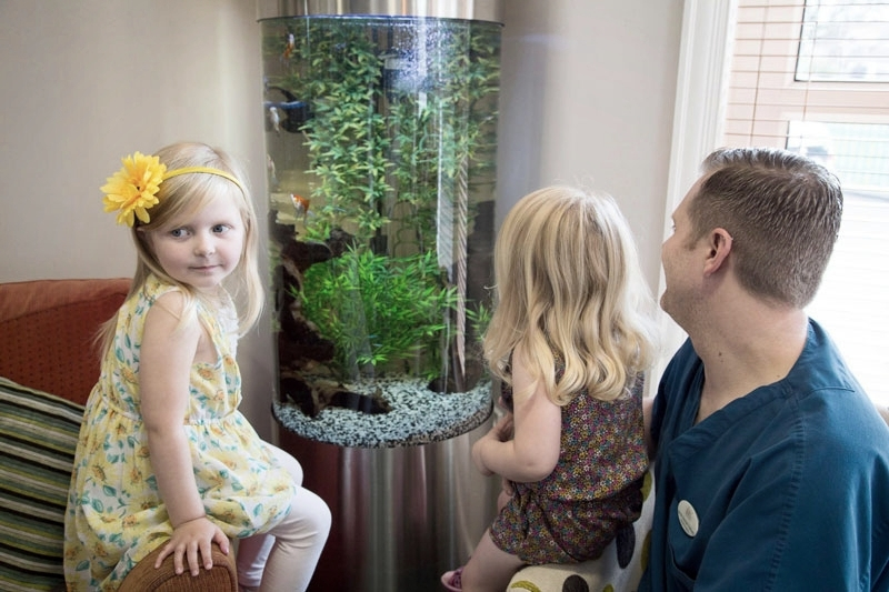 Dentist and two young patients looking at the practice fish tank