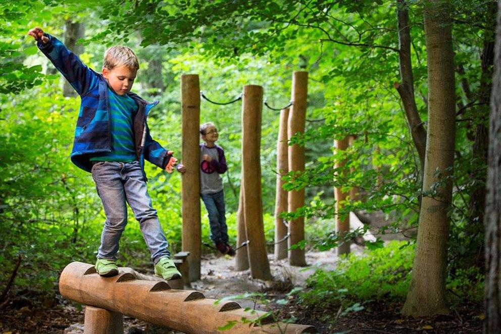 timber-assault-course-play-equipment.jpg