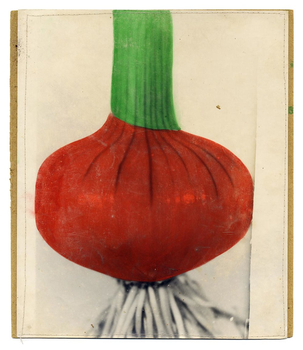Study of vegetables , hand coloured photographs on cardboard, 1980s. Courtesy of The Archive of Modern Conflict