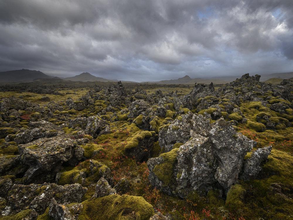 Lava Field 2017