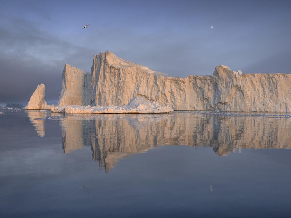 Iceberg, Disko Bay, Greenland 2016