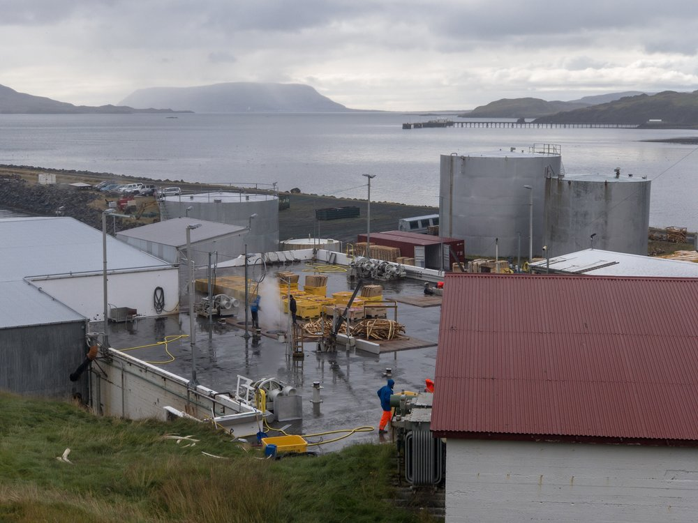 The whaling station with boxes of waste product visible by the steam and next to the holes where they'll be dumped