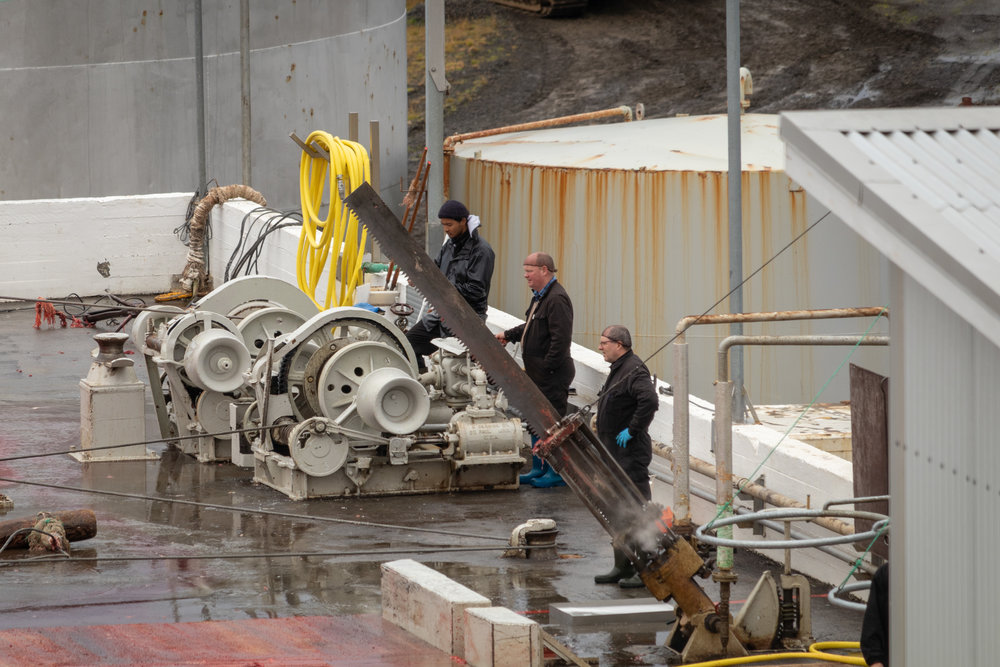 Workers wait to use the various winches and machines that help dismantle the whales. Notice the large pneumatic saw steaming in front. They will use winches to pull parts off the whale as you will see later