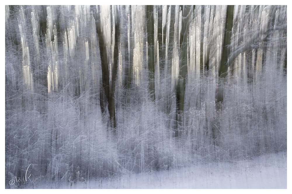 Taken just as the sun was rising through the woodland with a foreground of heavily snow laden grasses and brambles. Another chance to play with ICM.