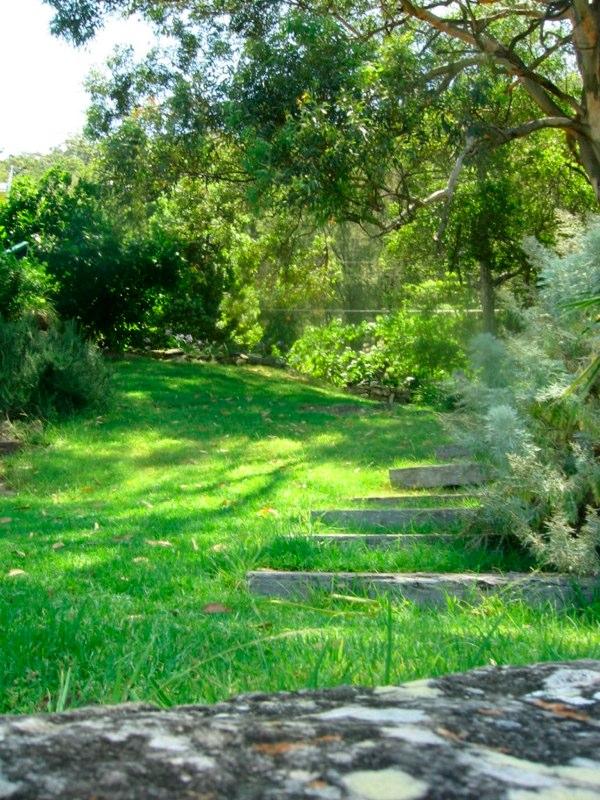 garden_lawn.jpg