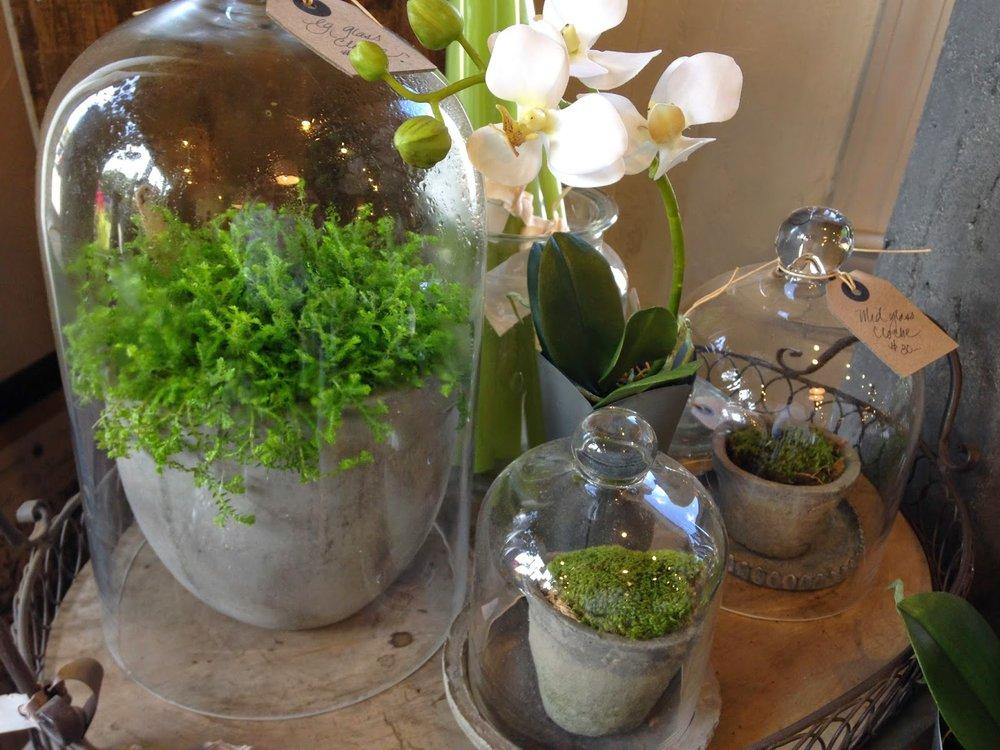 les fleurs : andover florist, floral shop, garden floral store : silk orchid plant : metal petal vase