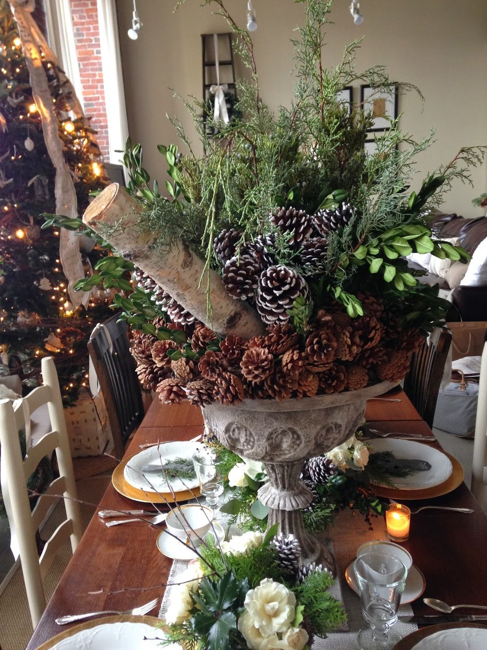 les fleurs : holiday urns : pine cones, birch, german boxwood, carolina sapphire
