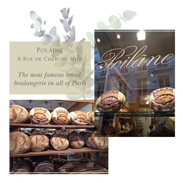 bread-polaine-blog.png