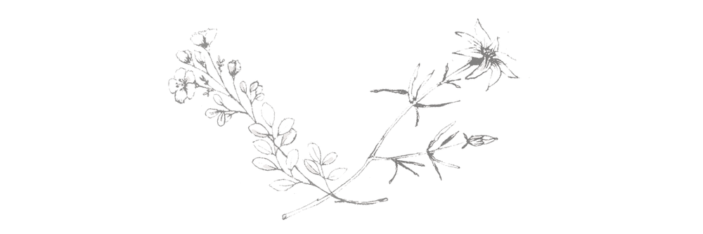 bastille-blog-flowers.png