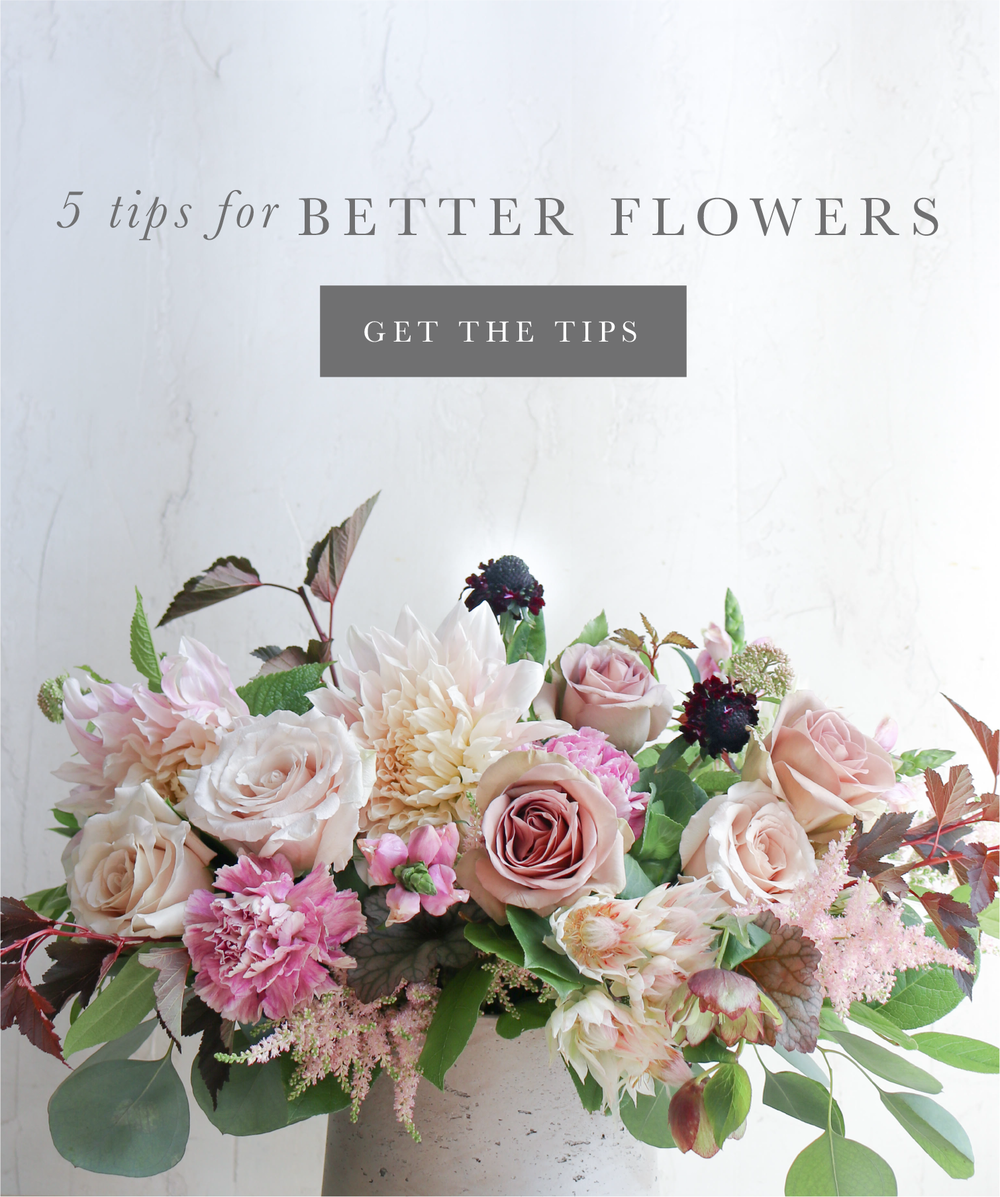 learn best tips for taking care of fresh flowers les fleurs andover MA